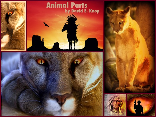 Animal Parts by David E Knop